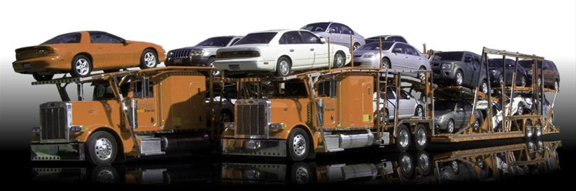Vehicle Transport Quote Brilliant Auto Transport Quote  Elite Auto Shipping  800.690.2085